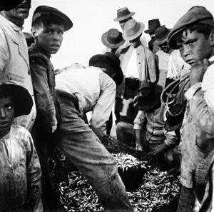 Pescadores sacando el copo